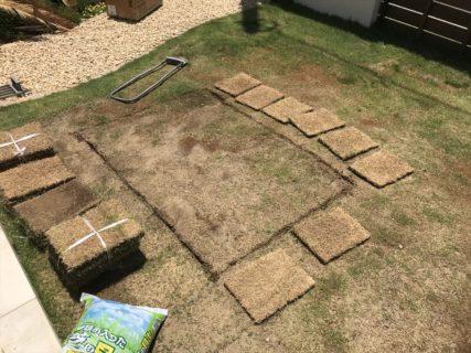 芝生のメンテを実施しました